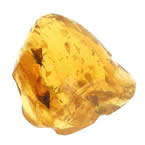 a lump of polished amber with flies embedded in it. Click to access popup window